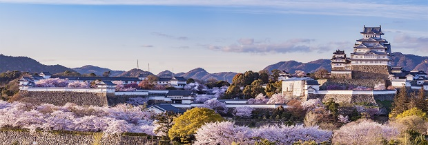 japan_incentive_blog